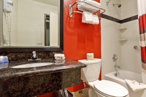 Red Roof Inn - Well Appointed Bathroom