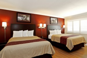 Red Roof Inn - Accessible Room with Modern Decor
